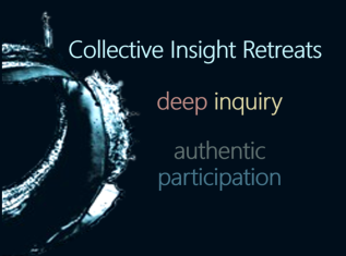Collective Insight Retreats